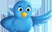 Kövess a Twitteren!